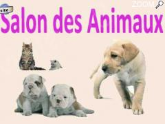 photo de Salon des Animaux