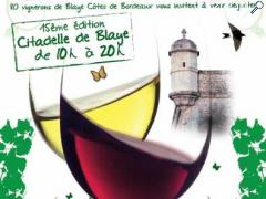 photo de PRINTEMPS DES VINS DE BLAYE