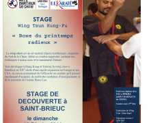 picture of Stage de découverte du Kung-Fu Wing Tsun  et du Bagua