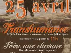 picture of Transhumance