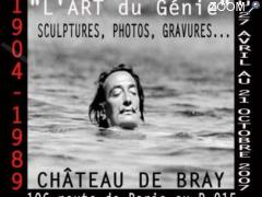 photo de Exposition Salvador Dali