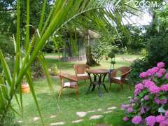 photo de Le jardin exotique de Cosy Home