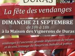 photo de Fête des Vendanges de Duras