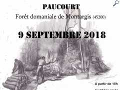 photo de Paucourt - Fête de la Forêt 2018